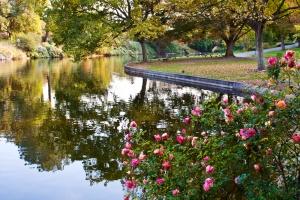 Arboretum_DavisWiki