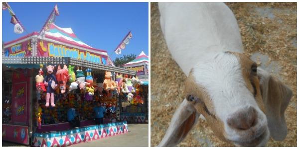 State Fair collage 1