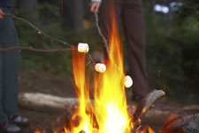 campfireimage_category