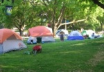 campout-300x209_category