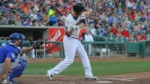 river_cats_batter_category