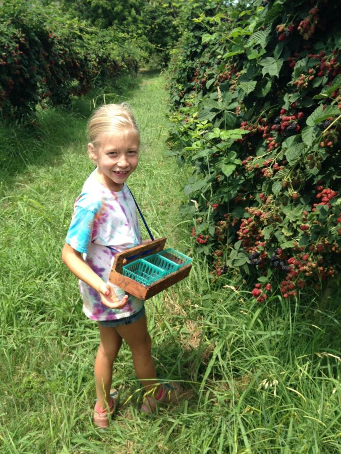 Berry Picking 3