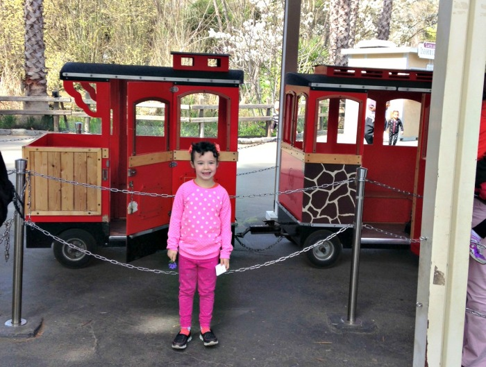 Sac Zoo Train Lara Brandon