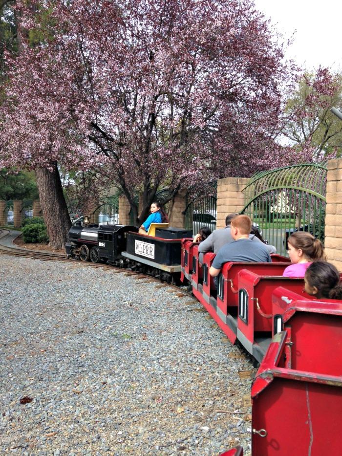 Train Rides - LB